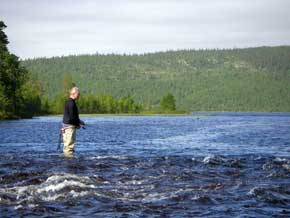 atlantic salmon, fly fishing, fishing, salmon, varzuga, river, varzuga river, kola peninsula